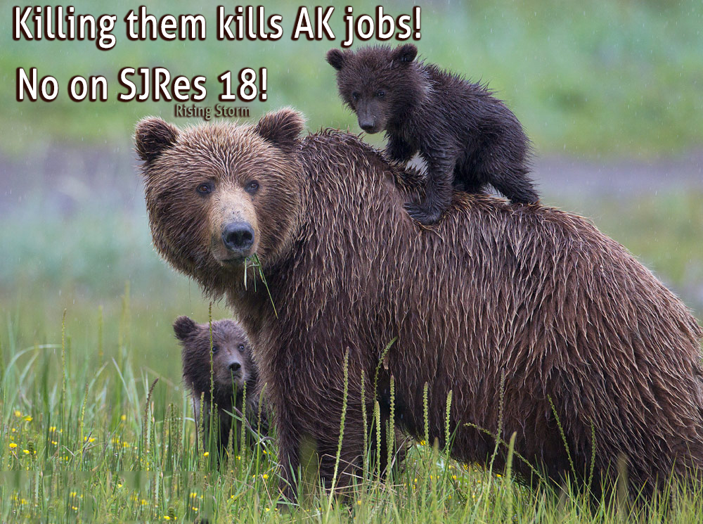 SJRes 18 kills AK jobs, wildlife, and opens public lands up to exploitation!