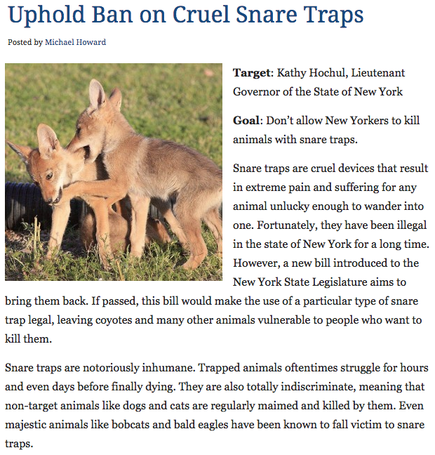 Say NO to snare traps!